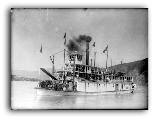 Steam Paddle Wheeler